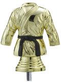 Judopak goud