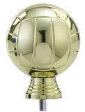 Volleybal goud