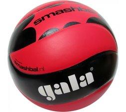 Gala Smashbal Master volleybal