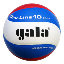 Gala volleybal Pro-line 5171S10